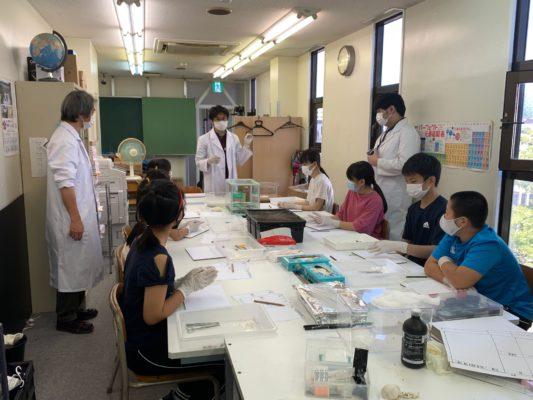 ランハート株式会社・コルトゼミ・三島校・サイエンス・解剖実験・体験授業
